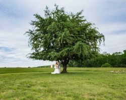 007-rustic-bride-groom-beneath-tree
