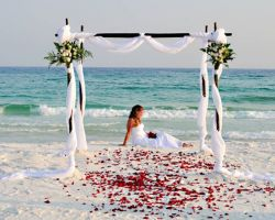 bride-sitting-on-beach-with-rose-petals