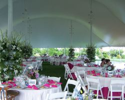 tent-pink-white